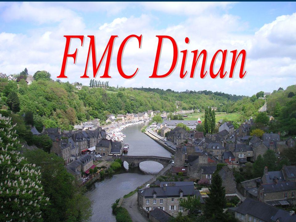 FMC Dinan Seminaire OGC demence 13-14 avril 11 MG 6 SPE= 35 %