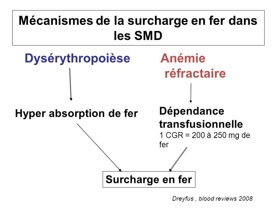 Mécanismes de la surcharge en fer dans les SMD
