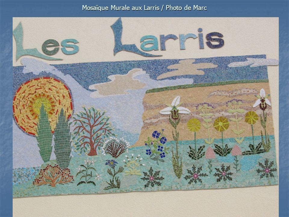 Mosaïque Murale aux Larris / Photo de Marc