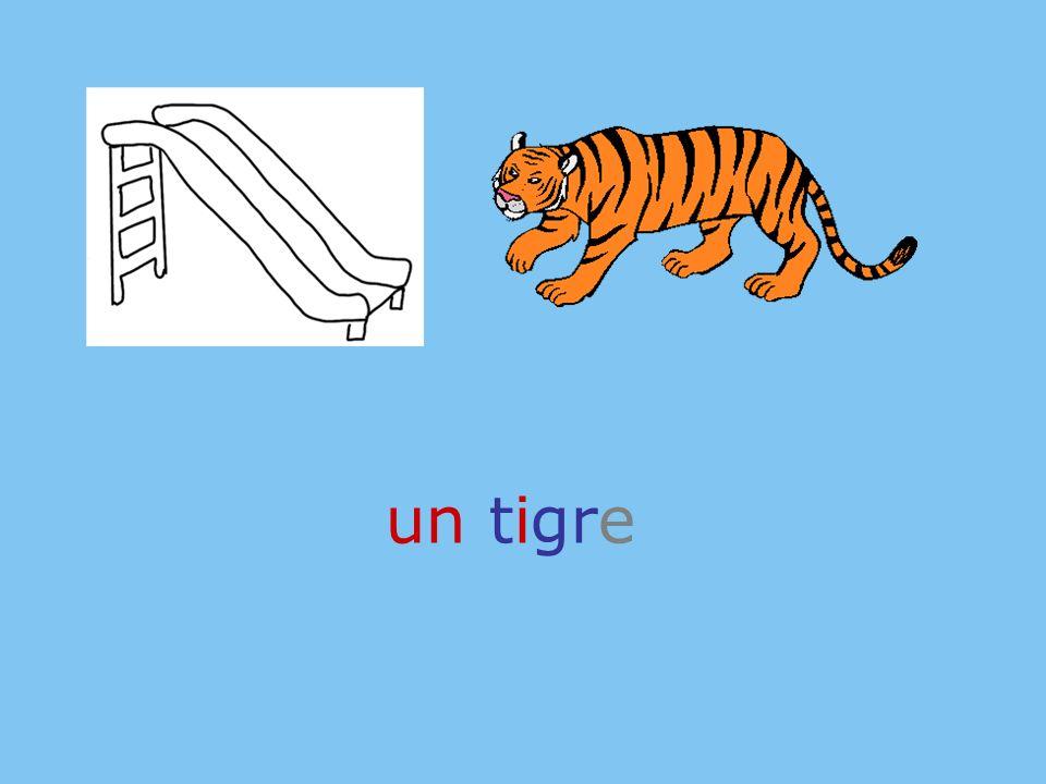 un tigre roue
