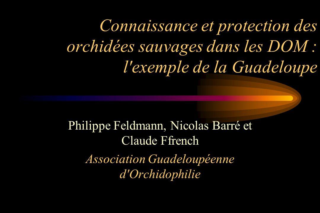 Connaissance et protection des orchidées sauvages dans les DOM : l exemple de la Guadeloupe