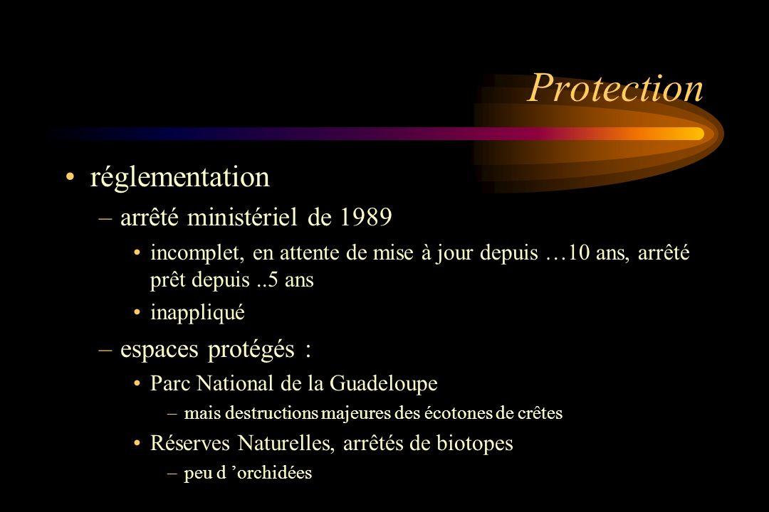 Protection réglementation arrêté ministériel de 1989