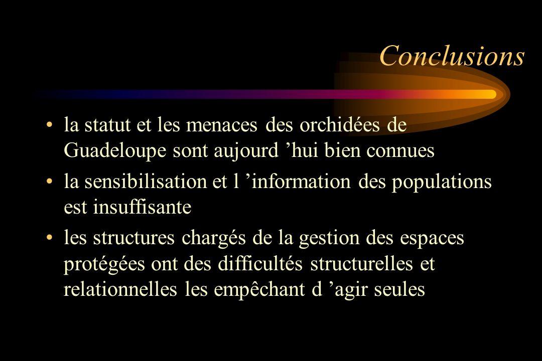 Conclusions la statut et les menaces des orchidées de Guadeloupe sont aujourd 'hui bien connues.