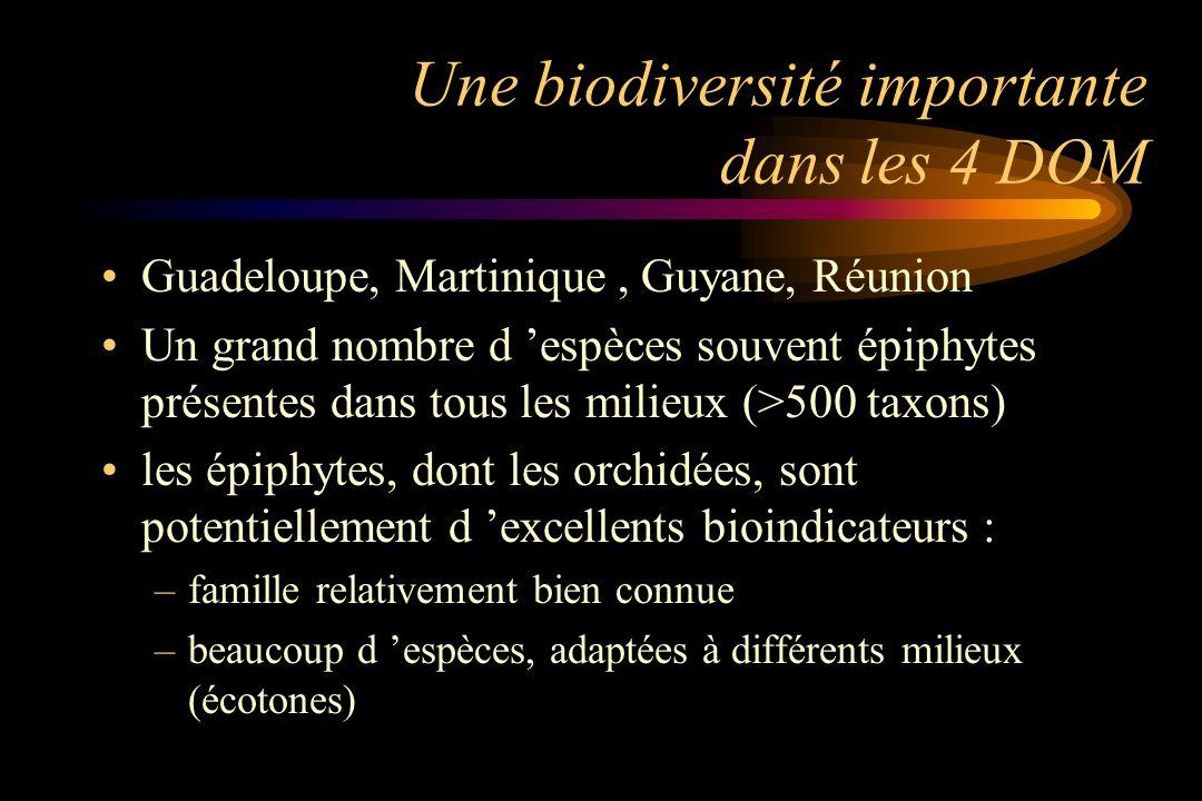 Une biodiversité importante dans les 4 DOM