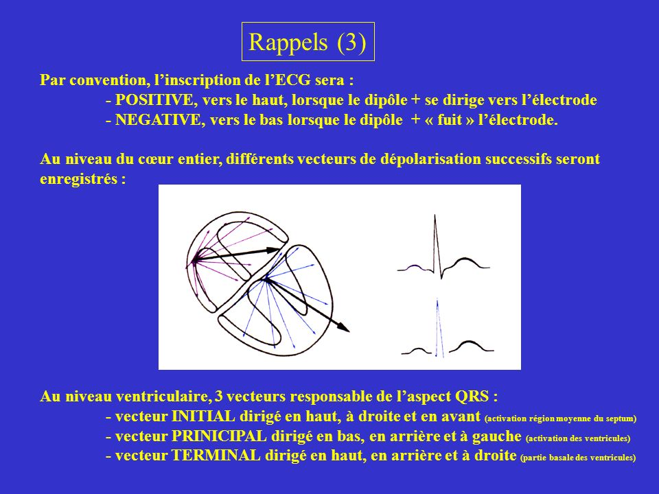 Rappels (3) Par convention, l'inscription de l'ECG sera :