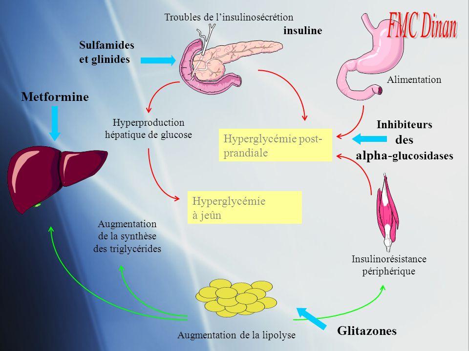Inhibiteurs des alpha-glucosidases
