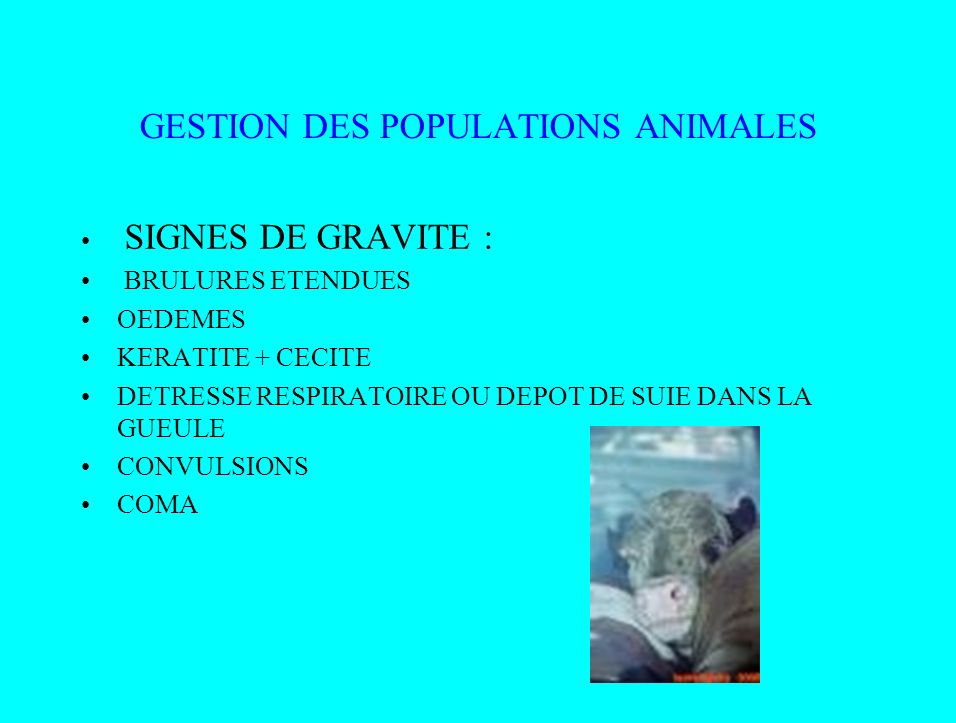 GESTION DES POPULATIONS ANIMALES