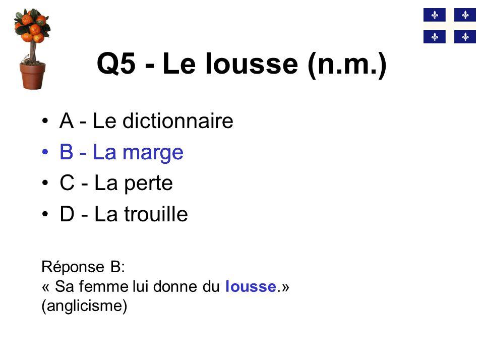 Q5 - Le lousse (n.m.) B - La marge A - Le dictionnaire B - La marge