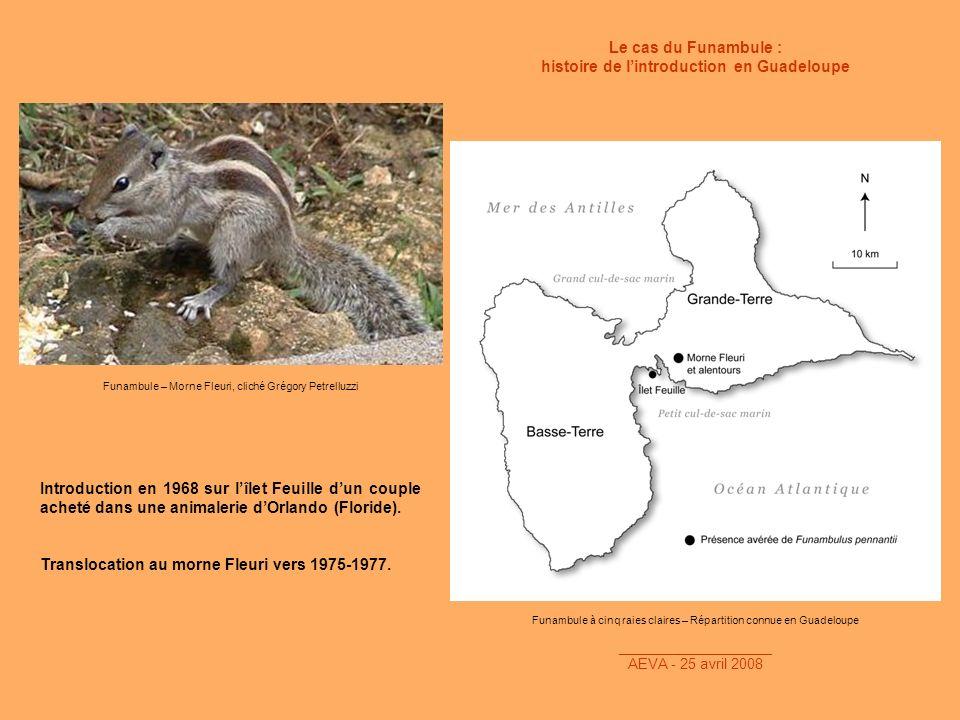 histoire de l'introduction en Guadeloupe
