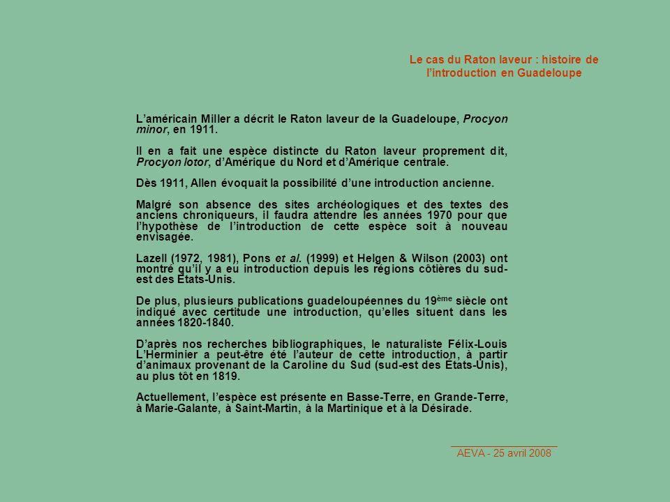 Le cas du Raton laveur : histoire de l'introduction en Guadeloupe