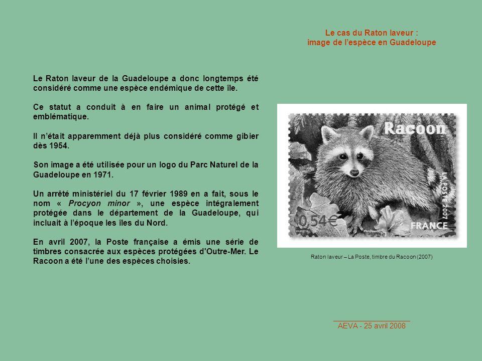 image de l'espèce en Guadeloupe