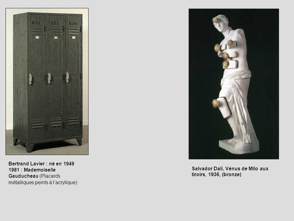 Bertrand Lavier : né en 1949 1981 : Mademoiselle Gauducheau (Placards métalliques peints à l'acrylique)