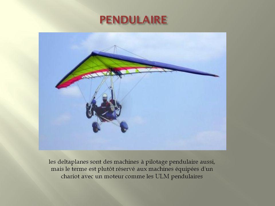 PENDULAIRE