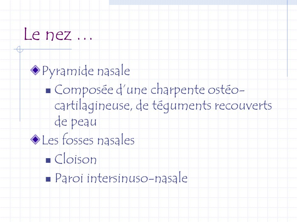 Le nez … Pyramide nasale