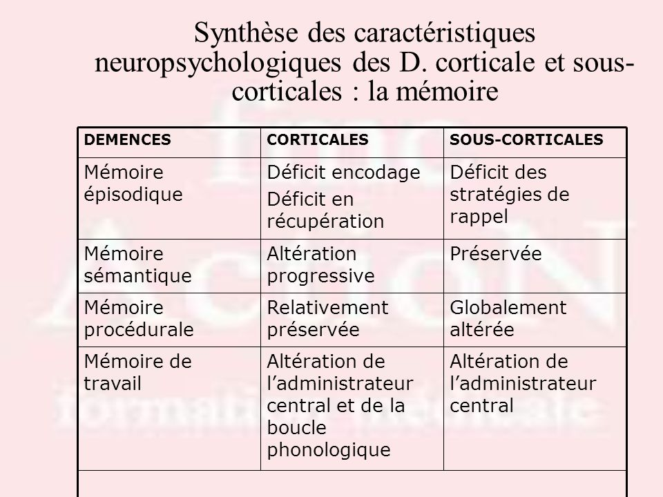 Drs S.LOTTON & R.THIRIONSynthèse des caractéristiques neuropsychologiques des D. corticale et sous-corticales : la mémoire.