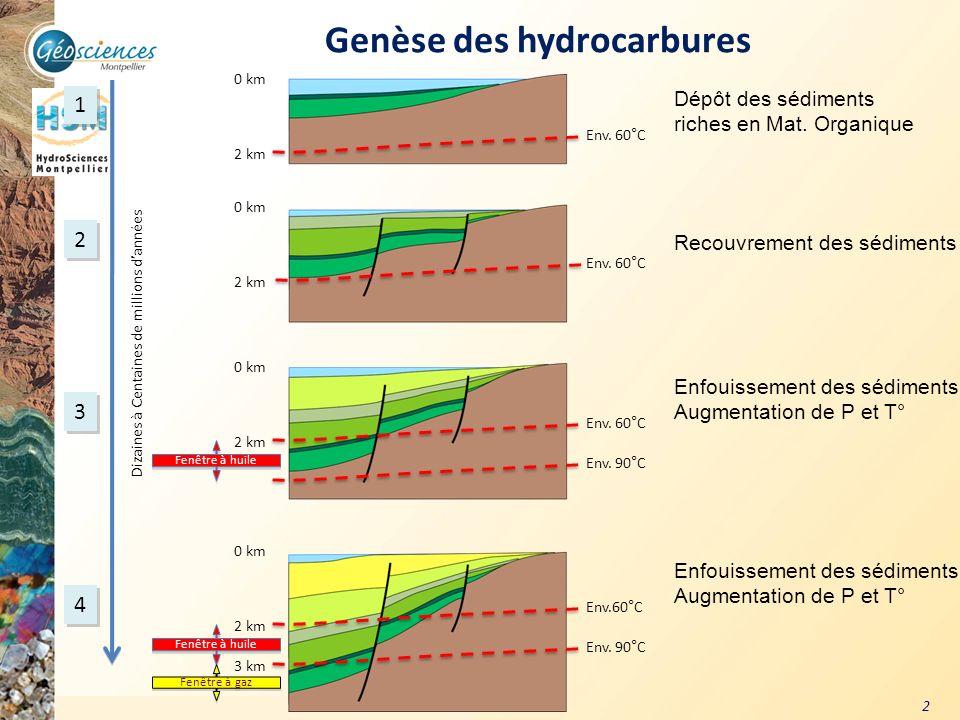 Genèse des hydrocarbures