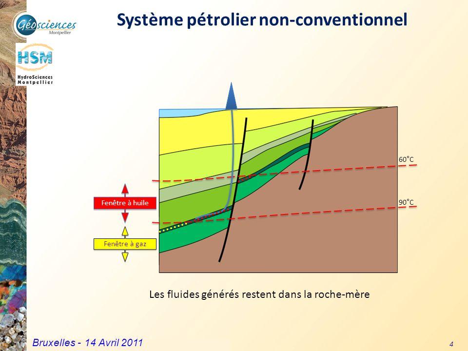 Système pétrolier non-conventionnel