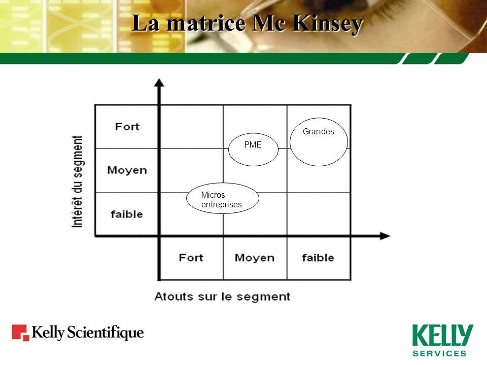 La matrice Mc Kinsey Grandes PME Micros entreprises