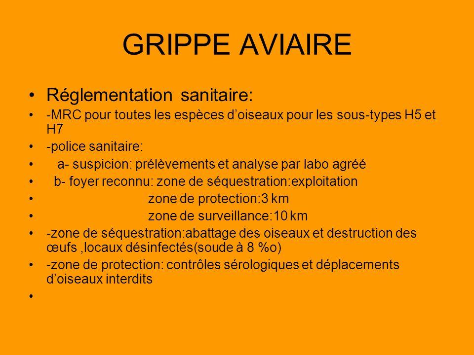 GRIPPE AVIAIRE Réglementation sanitaire: