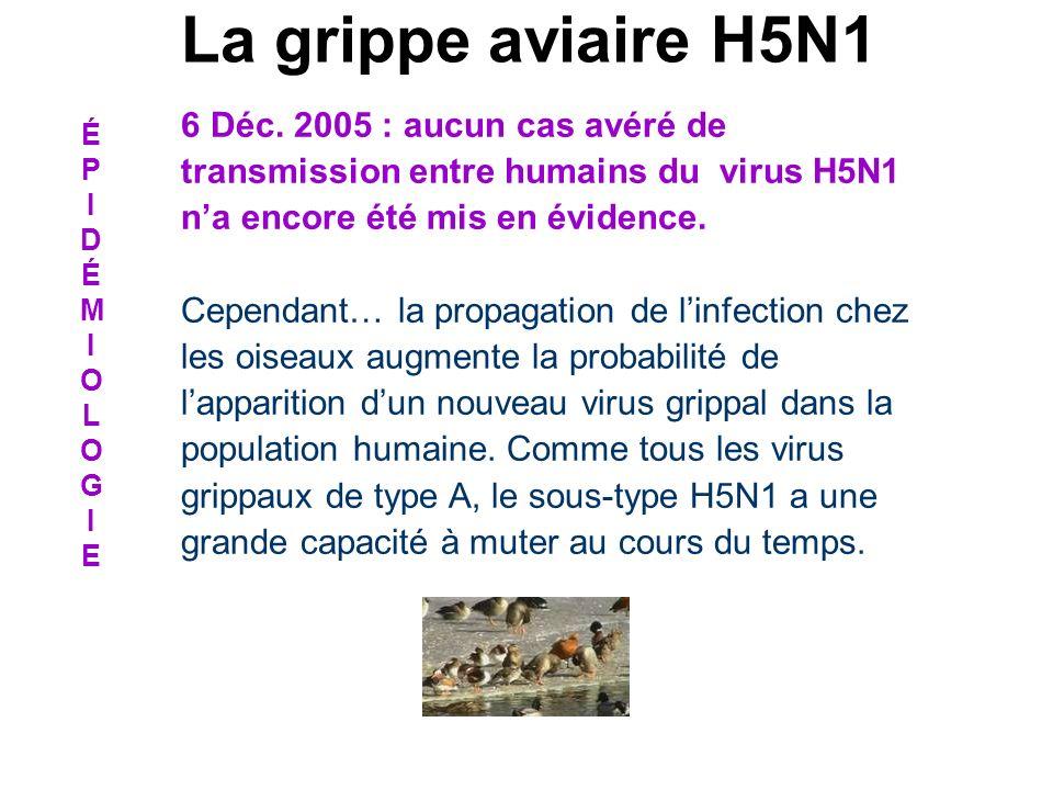 La grippe aviaire H5N1 6 Déc. 2005 : aucun cas avéré de transmission entre humains du virus H5N1 n'a encore été mis en évidence.