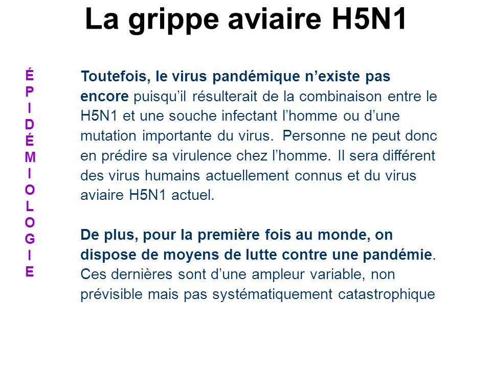 La grippe aviaire H5N1 É. P. I. D. M. O. L. G. E.