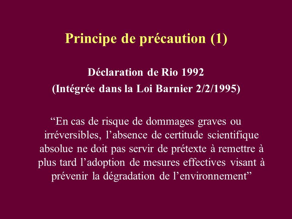 Principe de précaution (1)