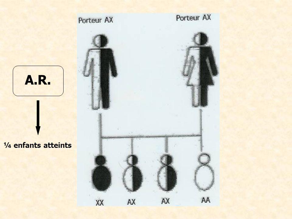 A.R. ¼ enfants atteints