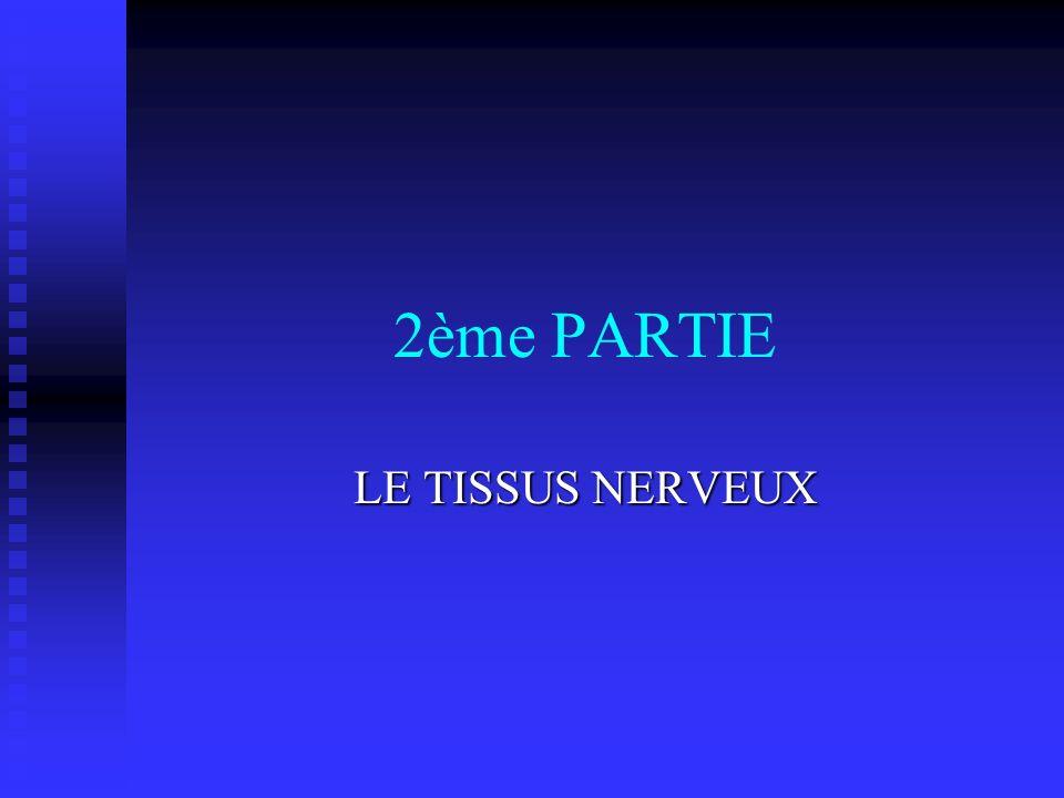 2ème PARTIE LE TISSUS NERVEUX