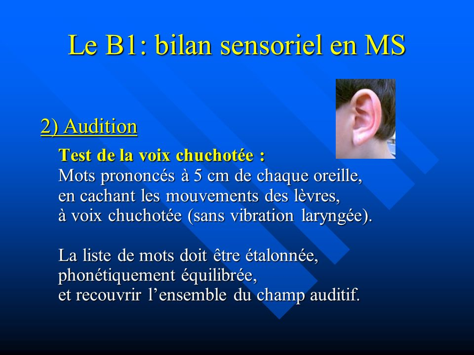 Le B1: bilan sensoriel en MS