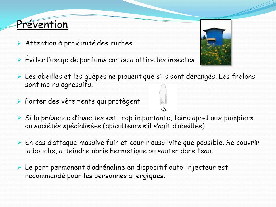 Prévention Attention à proximité des ruches