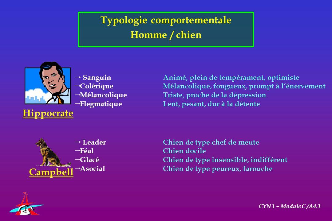 Typologie comportementale