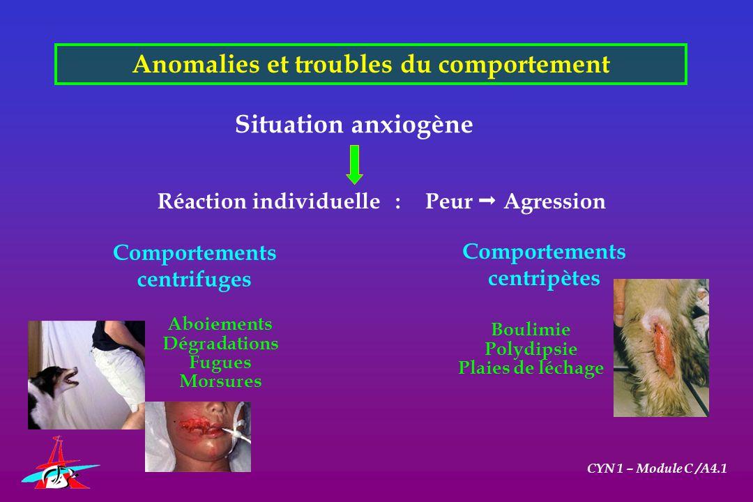 Anomalies et troubles du comportement