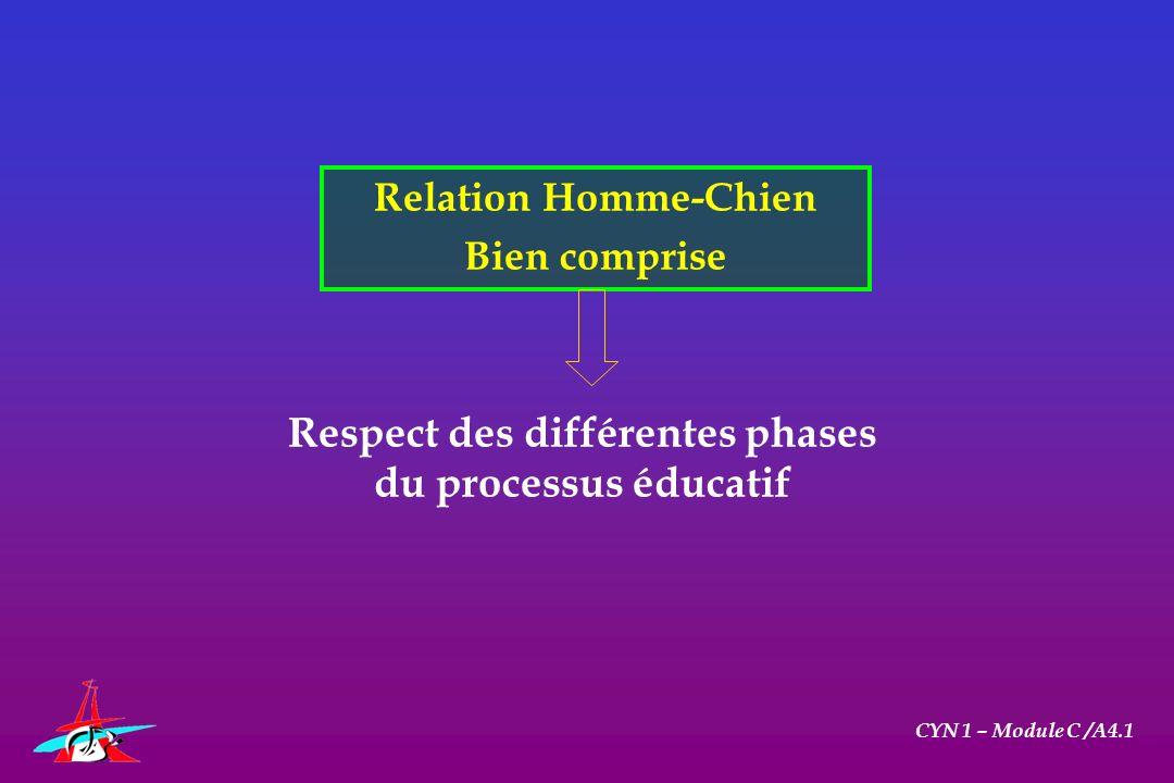 Respect des différentes phases