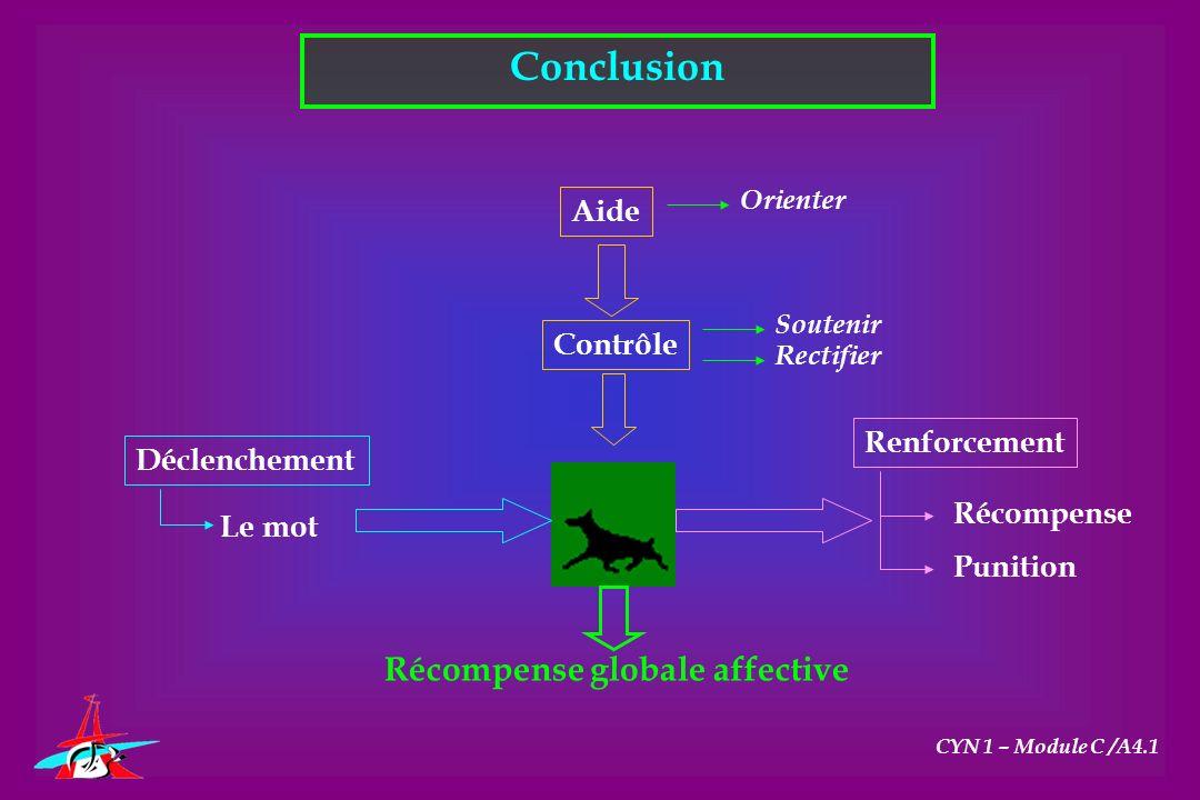 Conclusion Récompense globale affective Aide Contrôle Renforcement