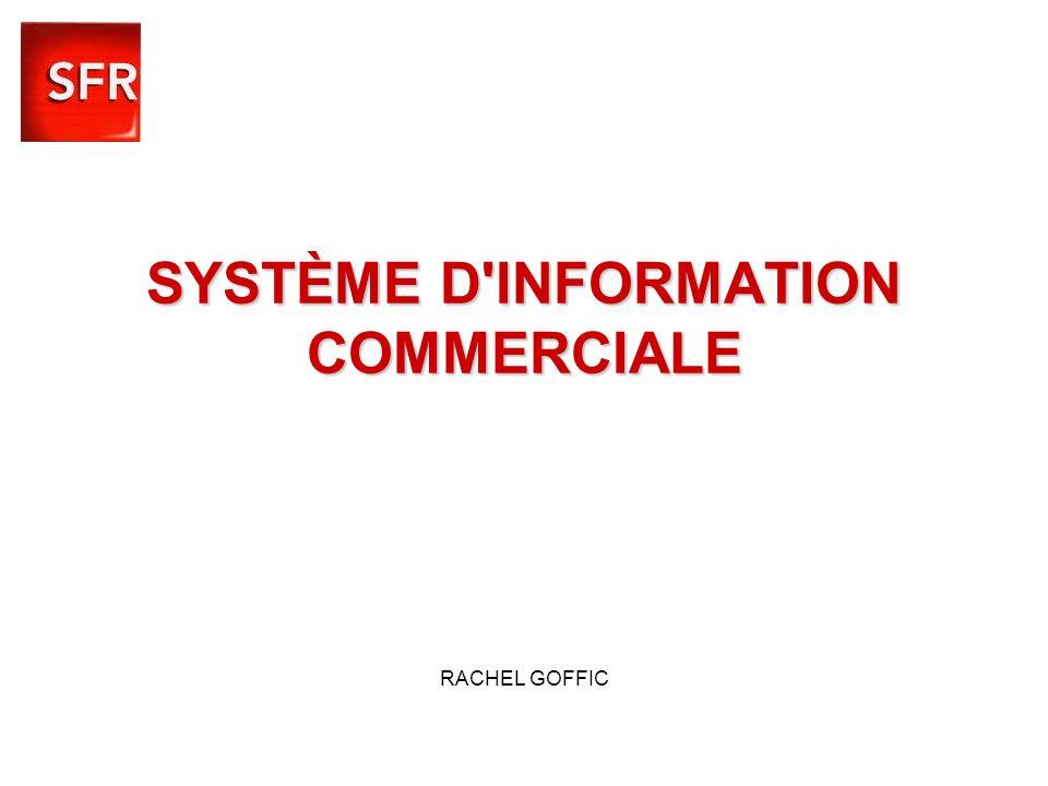 SYSTÈME D INFORMATION COMMERCIALE RACHEL GOFFIC