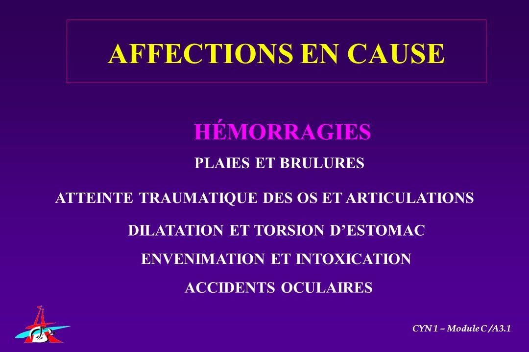AFFECTIONS EN CAUSE HÉMORRAGIES PLAIES ET BRULURES