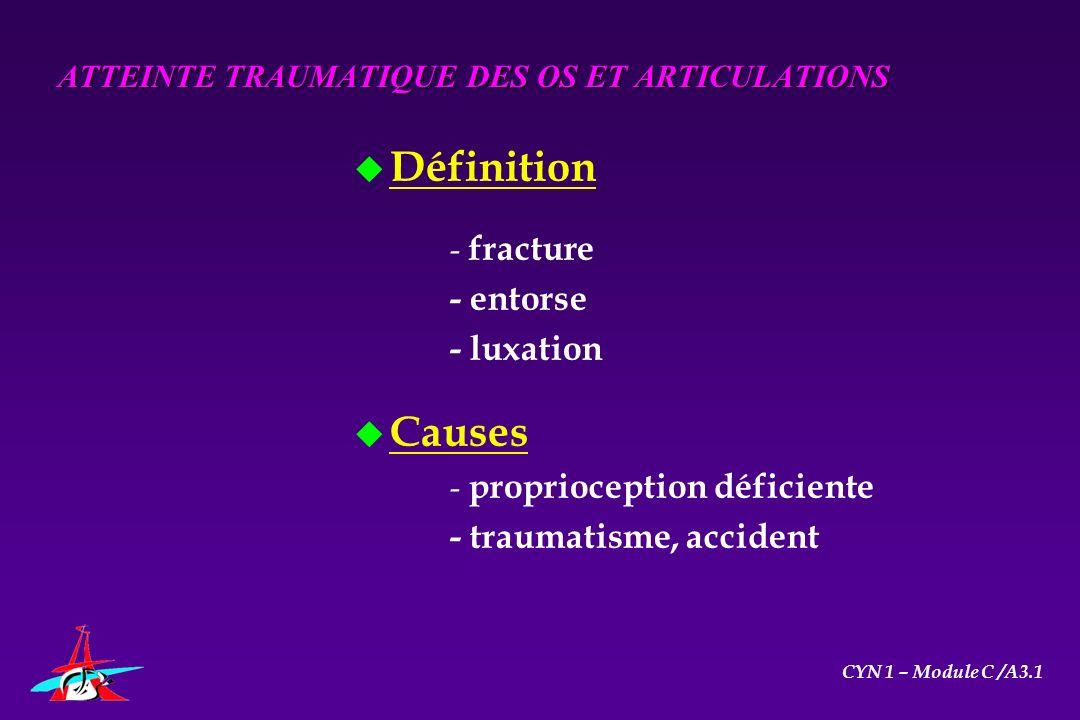 ATTEINTE TRAUMATIQUE DES OS ET ARTICULATIONS