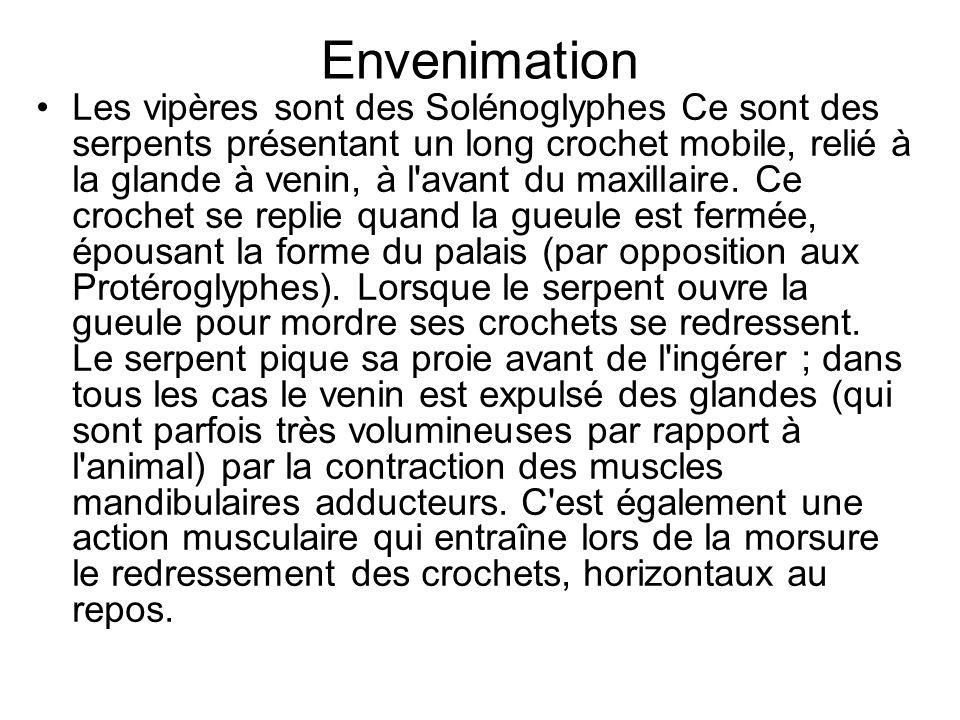 Envenimation