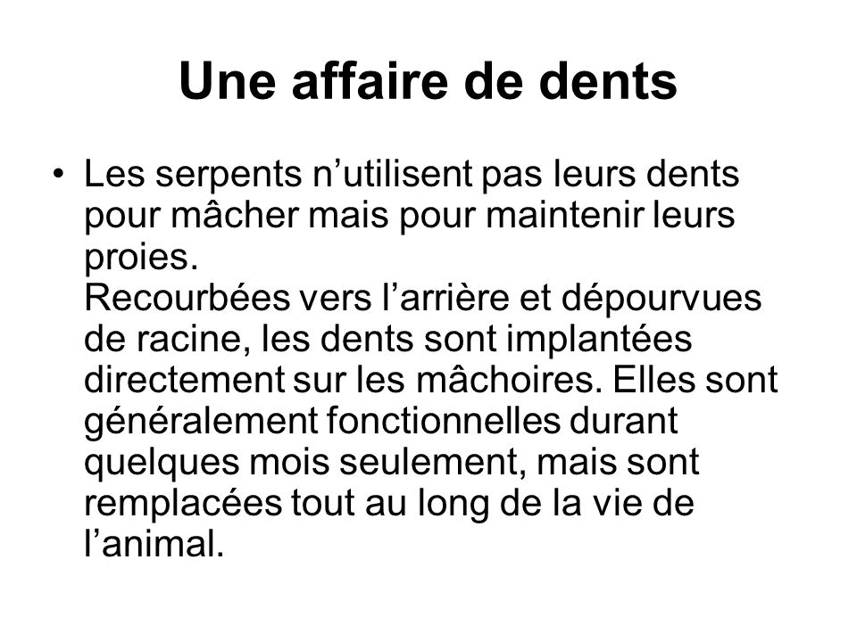 Une affaire de dents