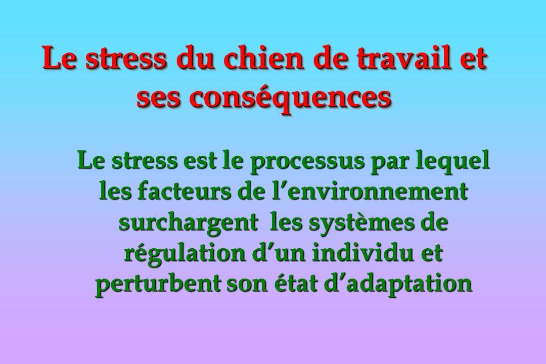 Le stress du chien de travail et ses conséquences