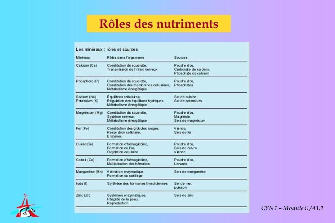Rôles des nutriments CYN 1 – Module C /A1.1