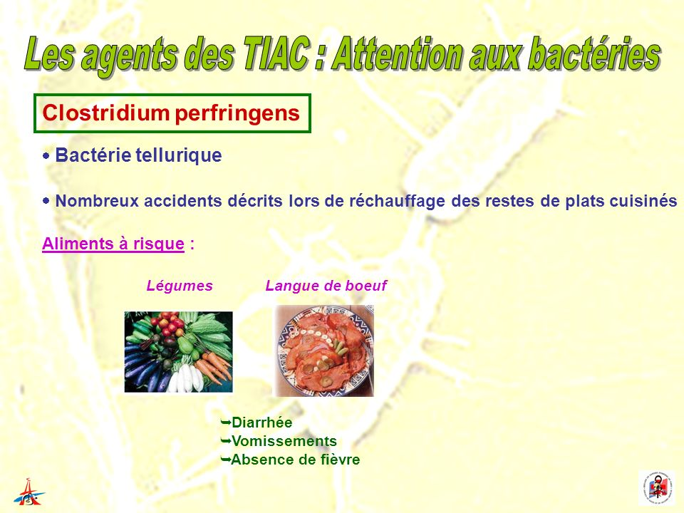 Les agents des TIAC : Attention aux bactéries