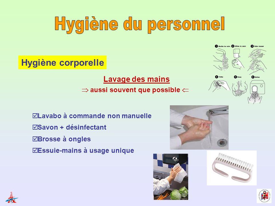 Hygi ne des personnels et des manipulations ppt video - Lavage des mains en cuisine collective ...