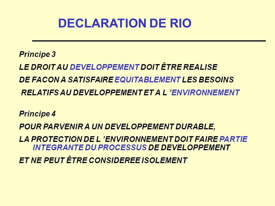 DECLARATION DE RIO Principe 3