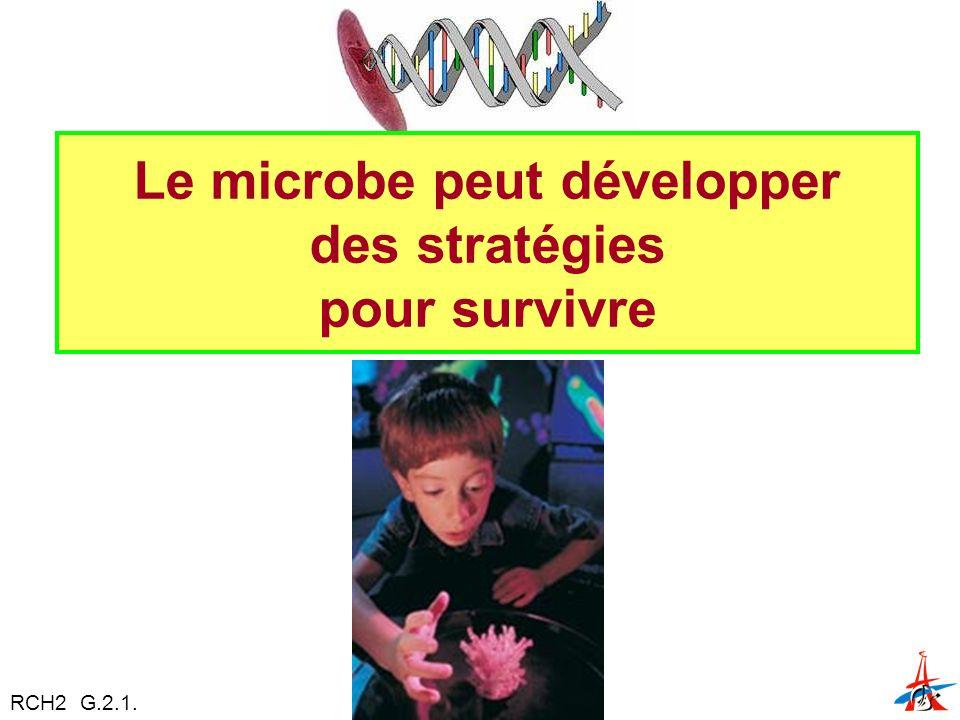 Le microbe peut développer des stratégies pour survivre