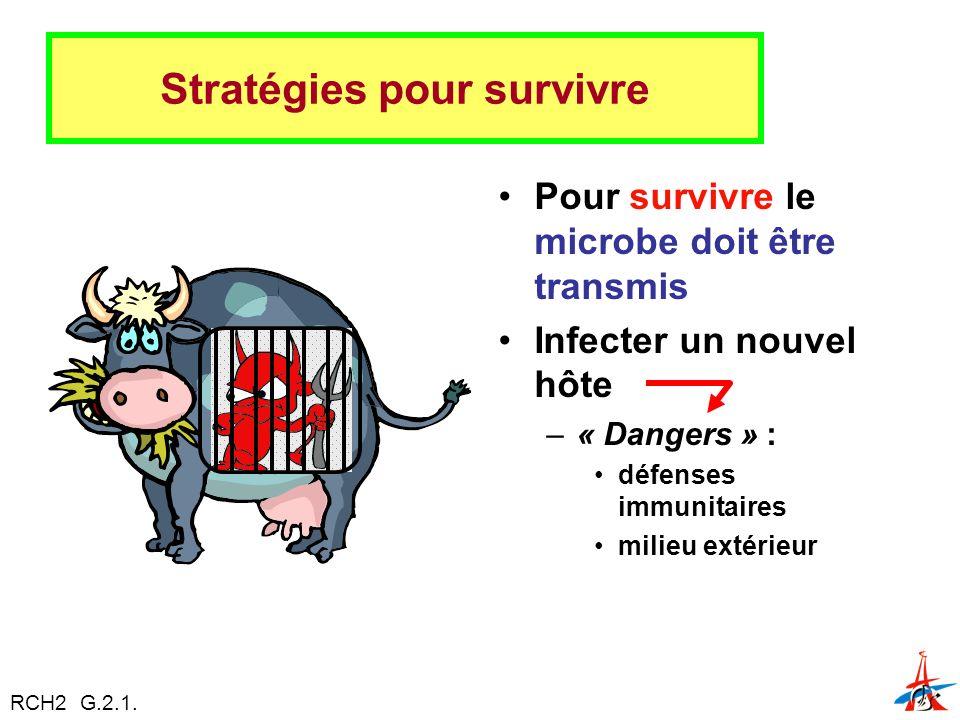 Stratégies pour survivre