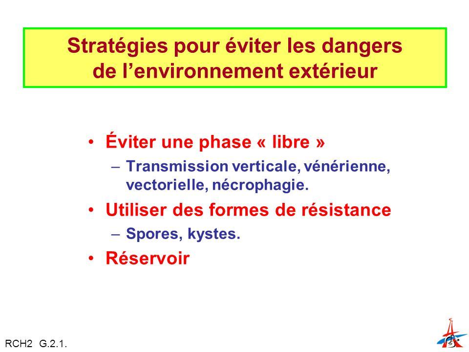 Stratégies pour éviter les dangers de l'environnement extérieur