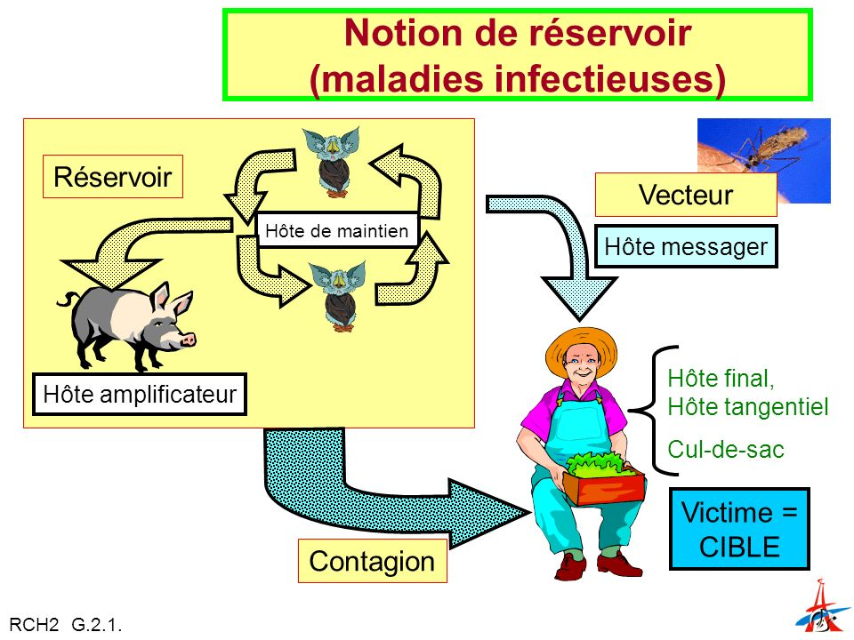 Notion de réservoir (maladies infectieuses)