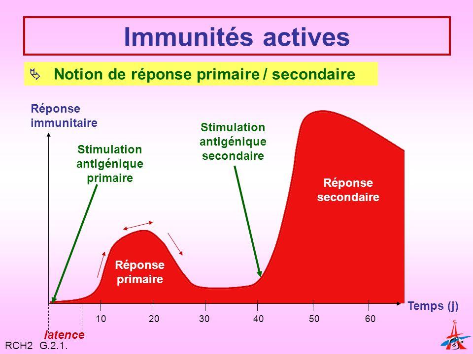 Stimulation antigénique secondaire Stimulation antigénique primaire