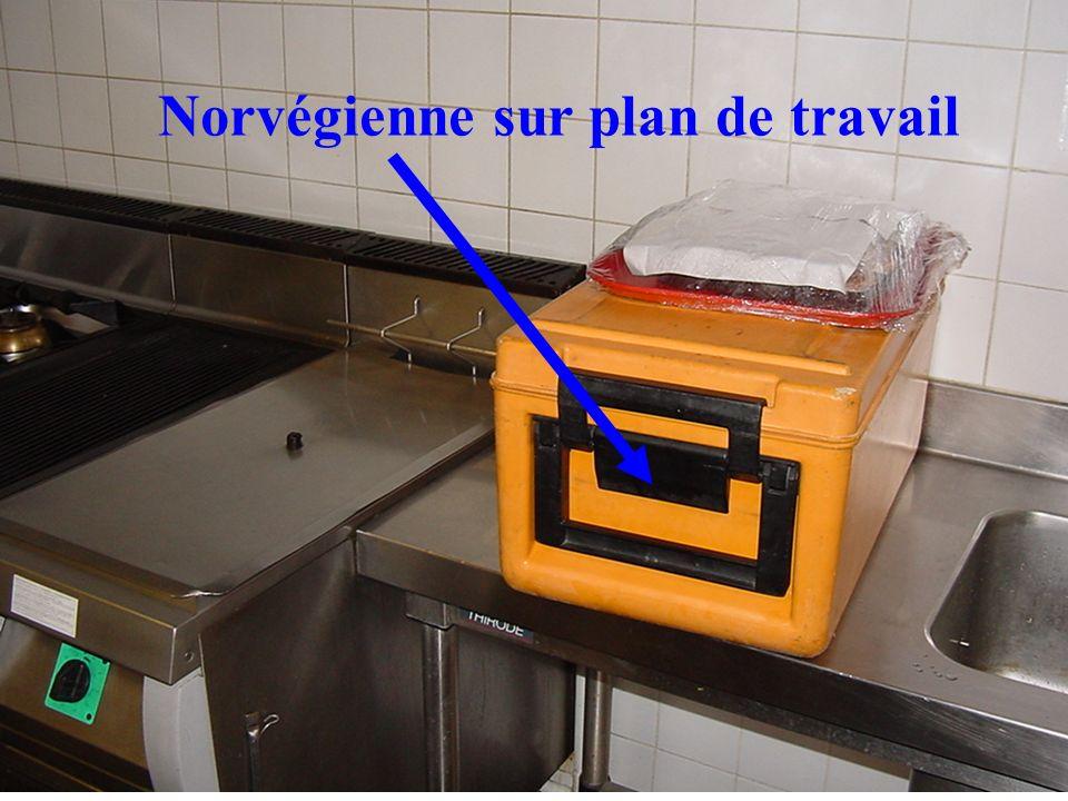 Norvégienne sur plan de travail